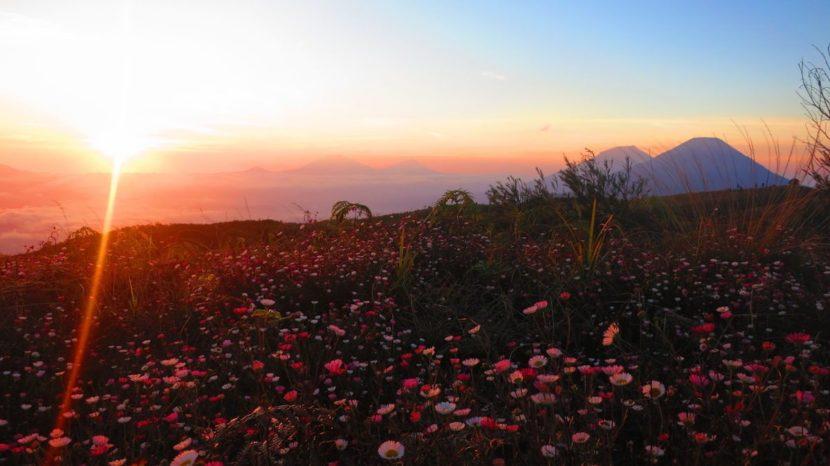 wisata gunung terbaik di indonesia